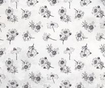 Fototapeta Young 60 - kwiaty, stokrotka