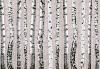 Fototapeta Junior 101 – brzózki, drzewa, szkice, różowe tło