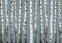 Fototapeta Junior 103 – brzózki, ryciny, drzew, niebieskie tło