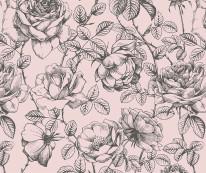 Fototapeta Junior 126– róże kwiaty, ryciny, pąki kwiatów, różowe, czarne, szkice