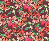 Fototapeta Marsala m2 - kwiaty, bratki, stokrotki, płatki