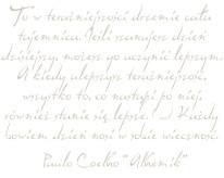 Fototapeta NAPISY 52 - Alchemik , Paulo Coelho, cytaty , szare napisy