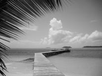 Fototapeta południowe klimaty 74 - plaża, morze, tropiki