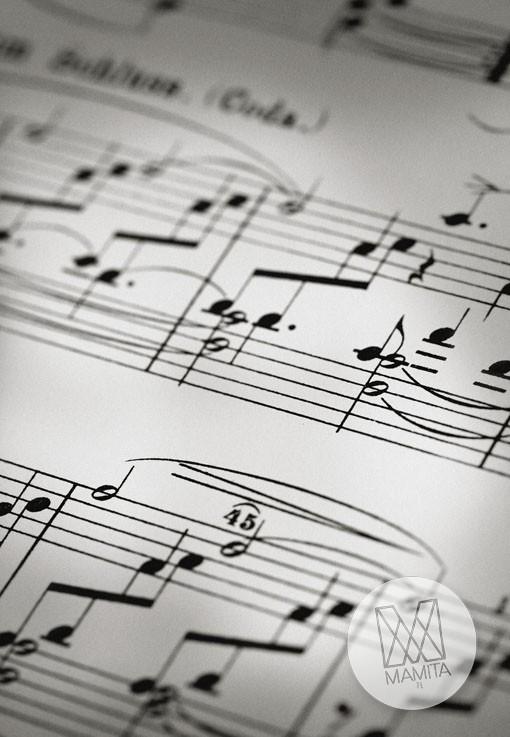 Fototapeta Salon 113 - nutki, pięciolinia, muzyka