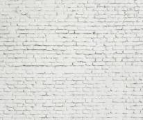 Fototapeta Salon 52 - ceglana ściana, mur, biała,