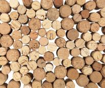 Fototapeta do kuchni 89 - pieńki, drewno, naturalne, drzewa