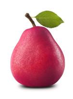 Fototapeta do kuchni 96 - jabłko, warzywa, owoce, kolorowe