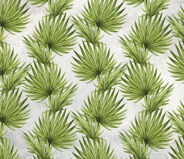 NOWOŚĆ 28 - palma, wiosna, skrzydłokwiat, zielone liście, tropiki, tropical leaves, summertime, liście, jungle