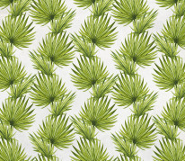 NOWOŚĆ 30- palma, wiosna, zielone liście, tropiki, tropical leaves, summertime, liście, jungle