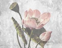 335_260_BETON_kazumasa_pink